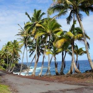 Dating i hawaii er svært