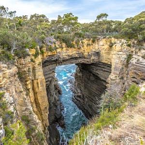 rejser til tasmanien