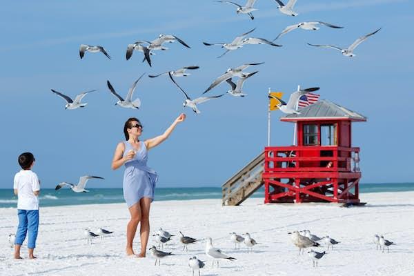 fem grunde til at vi elsker rejser til florida