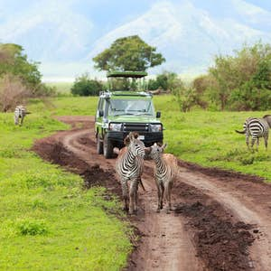 rundrejse_i_østafrika_lserengeti_nationalpark Ngorongoro_safari