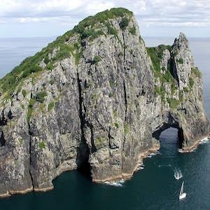 seværdigheder i New Zealand bay of islands