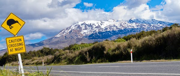 billeje i new zealand