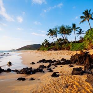 hvor er det varmt i februar hawaii maui