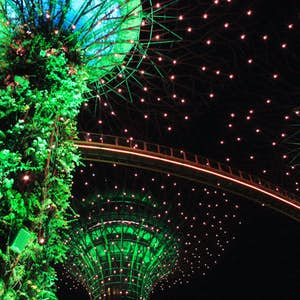 Singapore stop over Gardens by the Bay