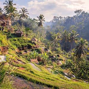 Bali med børn
