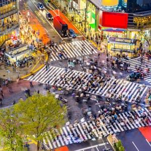 Tokyo. Shibuya fodgængerovergang.