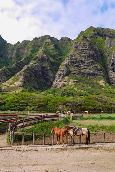 aktiv ferie på Hawaii